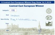 Evropská výstava 2010