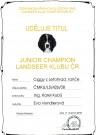 Junior Šampion Landseer klubu