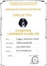 Šampion Landseer klubu ČR