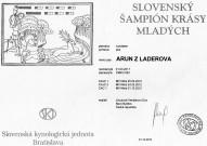 SLOVENSKÝ ŠAMPION KRÁSY MLADÝCH